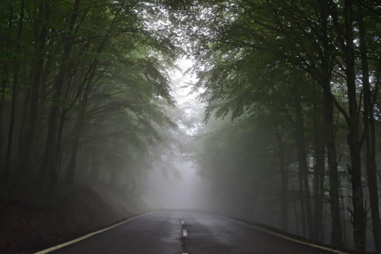 Angst Fehler zu machen anhand einer düsteren nebligen Straße in einem Wald