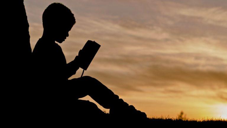Lerntypentest beschrieben durch einen Jungen, der ein Buch liest