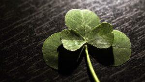 Was ist Glück - eine Definition - beschrieben durch ein vierblättriges Kleeblatt