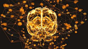negative Gedanken loswerden: Titelbild eines Gehirns